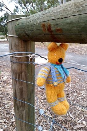 Fence bear